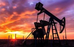 Kịch bản nào cho giá dầu năm 2016?