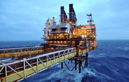 Giá dầu tăng mạnh nhất trong 25 năm qua