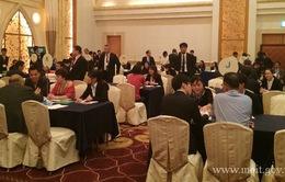Hợp tác kinh tế Việt Nam - Nhật Bản phát triển nhanh chóng