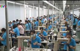 Ngành da giày Việt Nam bỏ ngỏ thị trường nội địa
