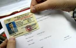 Phát hiện hơn 3.500 giấy phép lái xe giả