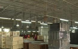 Nhiều rào cản xuất khẩu gỗ vào thị trường Nga