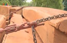 Bình Phước: Thu giữ hơn 70m3 gỗ lậu quý hiếm
