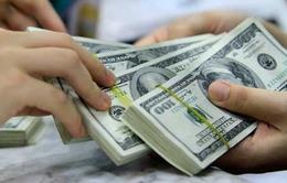 Lãi suất gửi USD còn 0%, thị trường ngoại tệ có sự bình ổn tốt hơn