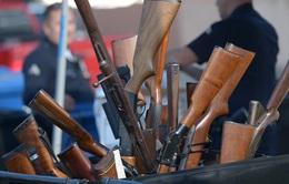 Nỗ lực kiểm soát súng đạn tại Mỹ có khả thi?