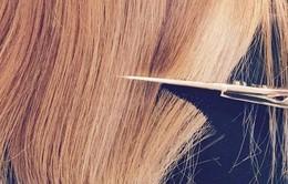 """5 cách đơn giản nhưng hiệu quả giúp hồi sinh """"tóc hư tổn"""""""