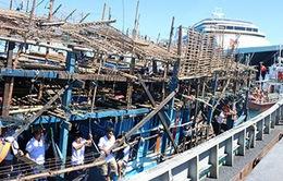 Khánh Hòa: Cứu thành công thuyền viên trên tàu Quảng Ngãi bị nạn ở Trường Sa