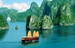 Họa sỹ Thái Lan với cảm hứng sáng tác về Vịnh Hạ Long
