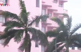 Hải Phòng: Nhiều nhà tốc mái, không có thiệt hại về người do bão số 1