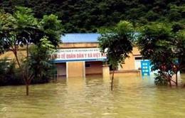 Hải Phòng, Bắc Kạn: Thiệt hại nghiêm trọng do mưa lớn