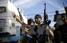 Tòa án Ai Cập liệt Hamas vào danh sách khủng bố