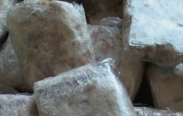Nga tiêu hủy 114 tấn thịt lợn nhập khẩu từ phương Tây