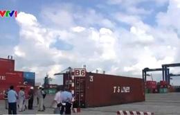 TP.HCM: Bắt lô hàng cấm nhập khẩu trị giá hơn 4 tỷ đồng