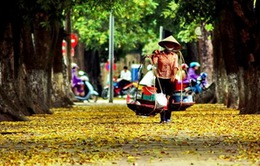 Việt Nam thuộc top 5 quốc gia có nhiều doanh nhân nhất thế giới