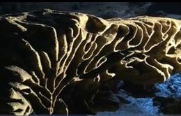 Quảng Trị phát hiện hệ thống hang động mới