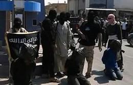 IS hành quyết 15 người Syria trong một ngày