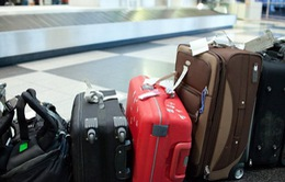Xử lý mạnh tay nhân viên sân bay lấy cắp tài sản của hành khách
