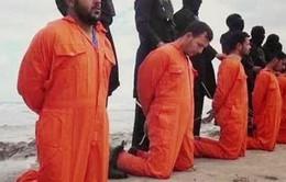 IS hành quyết 4 người tuyển mộ quân cho Chính phủIraq