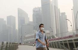 56 công ty tại Indonesia bị phạt vì gây ô nhiễm bao phủ Đông Nam Á
