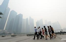 Tình trạng ô nhiễm khói bụi tại Singapore ngày càng tồi tệ