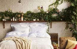 Những căn phòng mang đậm phong cách Bohemian