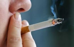 Mỗi năm 40.000 người tử vong vì các bệnh liên quan đến khói thuốc lá