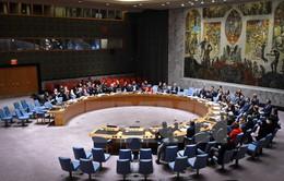 Hội đồng Bảo an LHQ thông qua nghị quyết về thỏa thuận hòa bình ở Ukraine