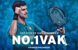 Hành trình lên đỉnh thế giới của Novak Djokovic sau 5 năm 'yếu đuối'