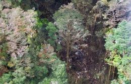 Indonesia tiếp cận hiện trường vụ tai nạn máy bay