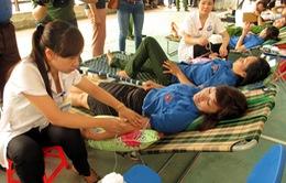 Hội Chữ Thập đỏ phát động hiến máu tình nguyện