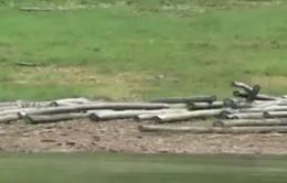 Gian nan bảo vệ rừng phòng hộ Hồ Núi Cốc