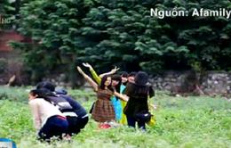 Du khách ý thức kém, những cánh đồng hoa ở Hà Nội 'tan nát'