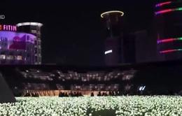 Vườn hoa hồng đèn Led độc đáo dịp Giáng sinh tại Hàn Quốc
