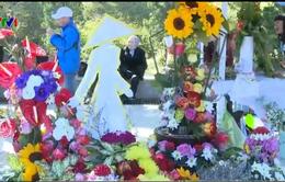 Hơn 100 tác phẩm tham gia Hội thi cắm hoa nghệ thuật 2015