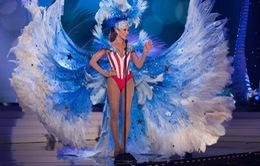 Dàn thí sinh Hoa hậu hoàn vũ 2014 rực rỡ trong trang phục dân tộc