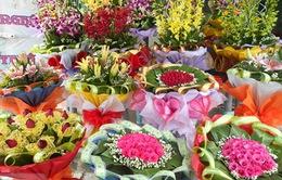 Thị trường hoa 20/11 tăng giá từ 10 - 20%