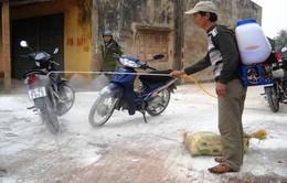 Thanh Hóa: Xuất hiện ổ dịch cúm gia cầm A/H5N6