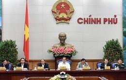 Công điện của Thủ tướng đôn đốc thực hiện nhiệm vụ sau kỳ nghỉ Tết Nguyên đán
