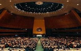 Hội đồng Bảo an LHQ họp về Yemen