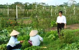 HTX nông nghiệp tìm hướng đi mới trong phân phối sản phẩm