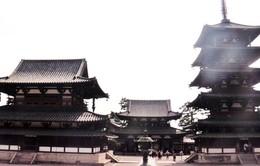 Khám phá ngôi chùa gỗ cổ nhất Nhật Bản