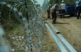 Các quốc gia đóng cửa biên giới, kỉ nguyên 'châu Âu tự do' kết thúc?