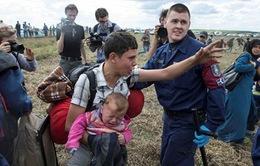 Luật nhập cư mới của Hungary chính thức có hiệu lực