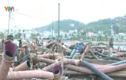 Quảng Ninh: Bắt quả tang 14 tàu hút cát trái phép