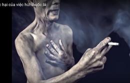 Nguy cơ 1/3 nam giới Trung Quốc chết trẻ do hút thuốc lá