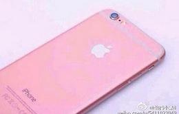 iPhone 6S sẽ ra mắt ngày 11/9 với màu hồng cá tính?