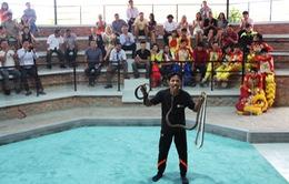 Khai trương khu biểu diễn xiếc rắn tại Nha Trang