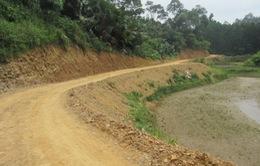 TT-Huế: Đầu tư 54 tỷ đồng cho hệ thống đường lâm nghiệp