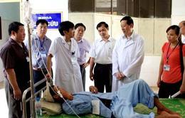 Vụ ngộ độc do ăn nấm ở Hà Giang: 17 bệnh nhân đã xuất viện