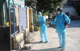 Quảng Nam: Dịch sốt xuất huyết diễn biến phức tạp